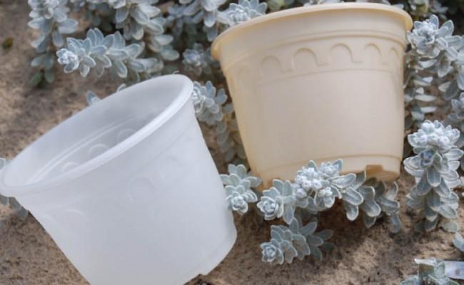 BiodegradablePot-Product-3