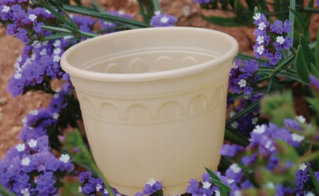 BiodegradablePot-Product-4