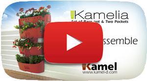 Kamelia-Movie-Icon
